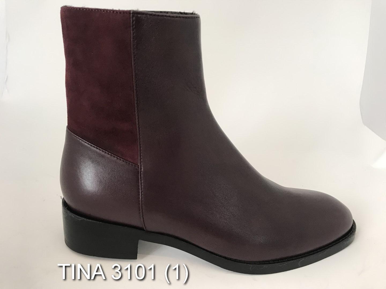 TINA-3101-1