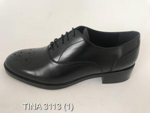 TINA-3113-1