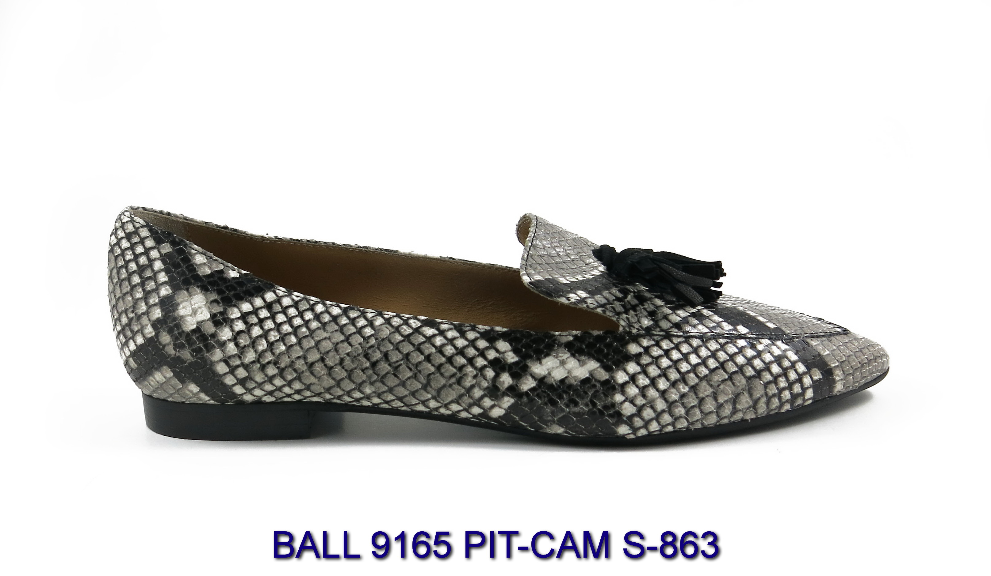 BALL-9165-PIT-CAM-S-863