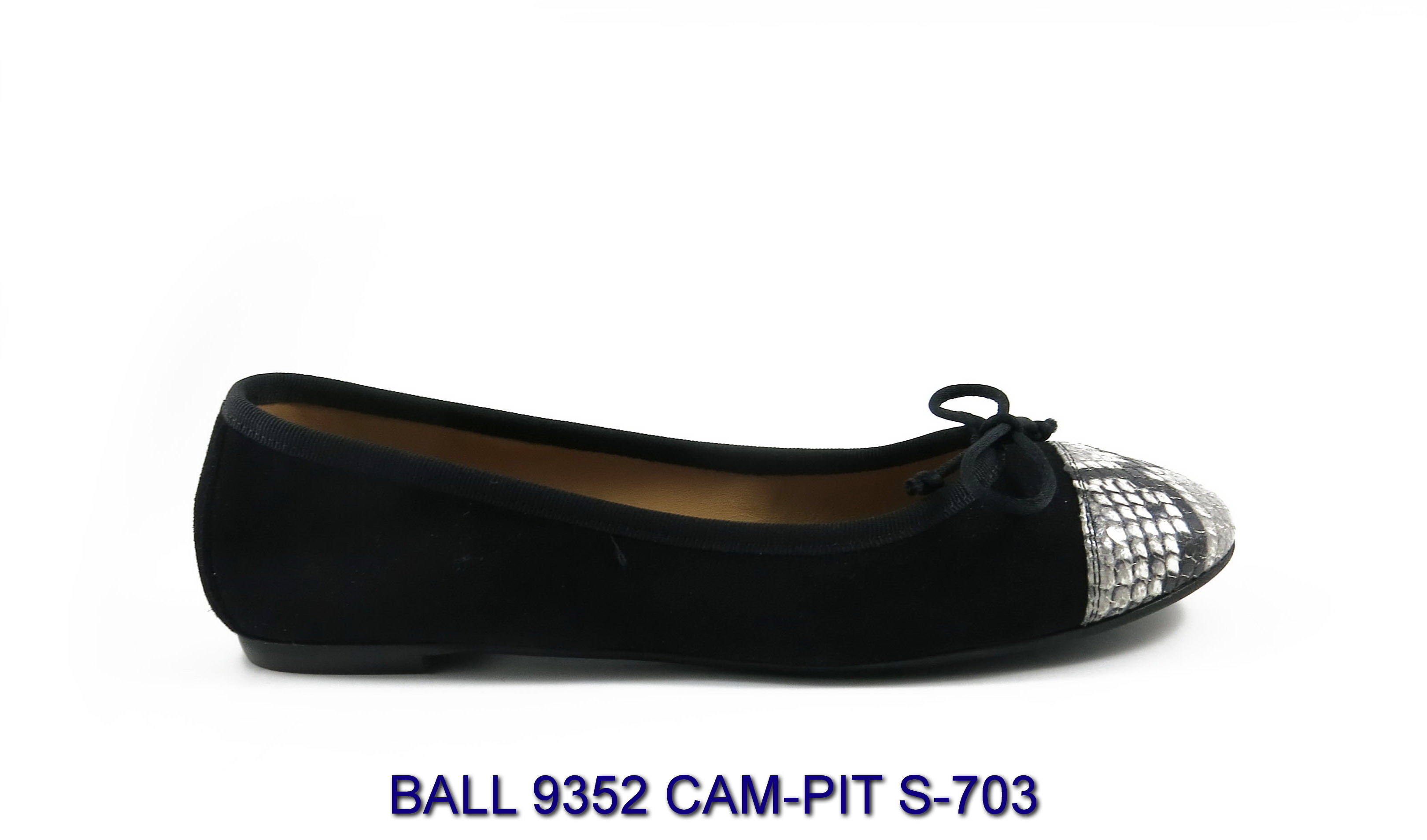BALL-9352-CAM-PIT-S-703