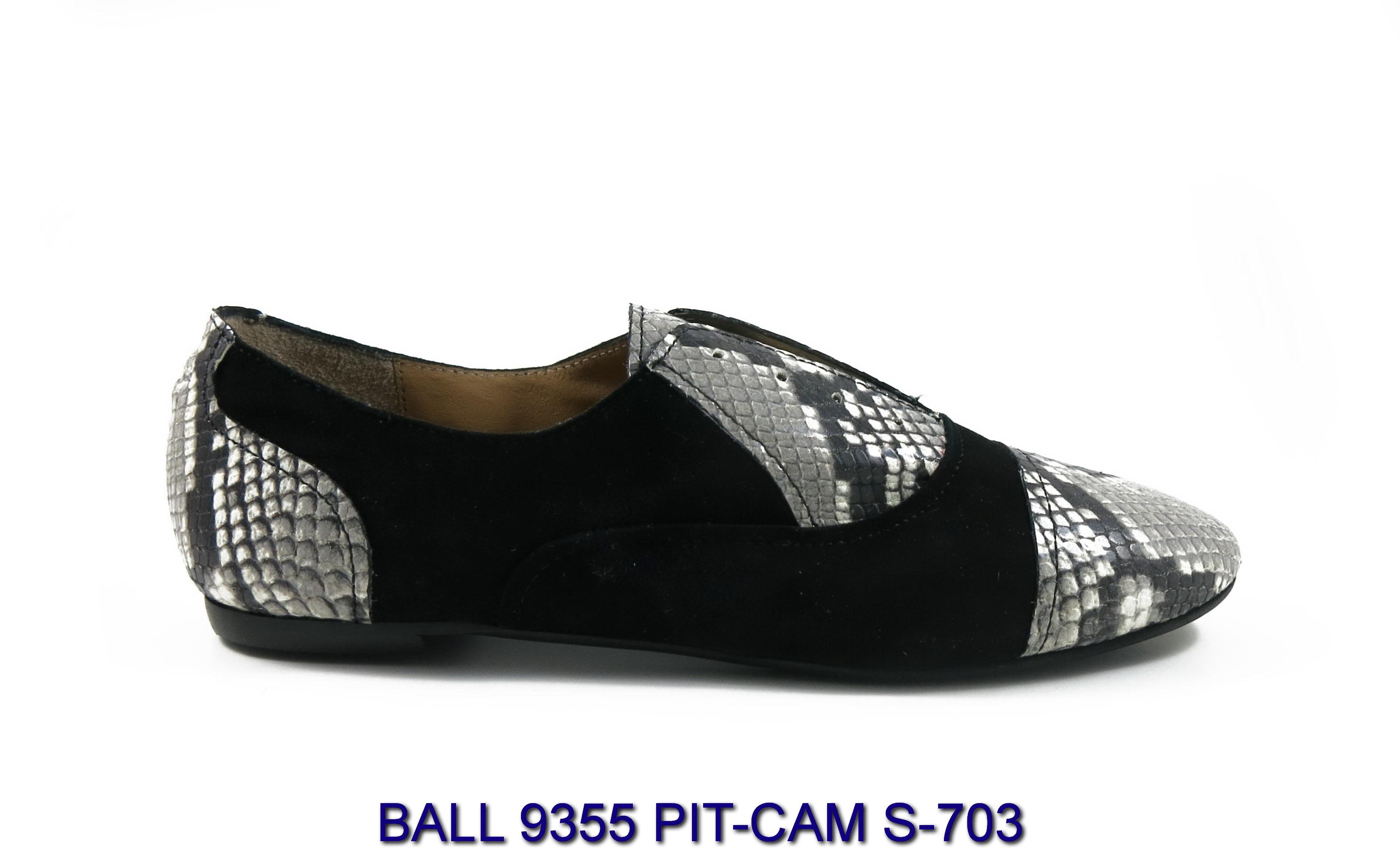 BALL-9355-PIT-CAM-S-703